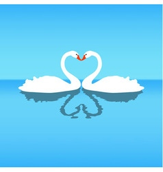 Two lovers swans blue background vector
