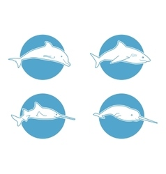 Blue flat logo dolphin for company and business vector