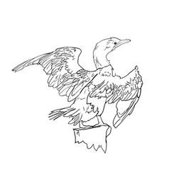 drawing of little cormorant bird vector image vector image