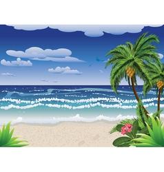 Palm tree on beach2 vector image