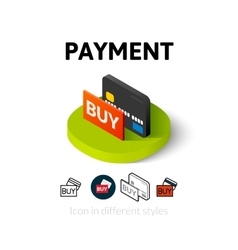 Payment icon in different style vector