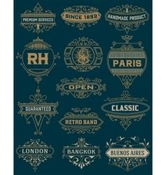 Vintage Designs template vector image