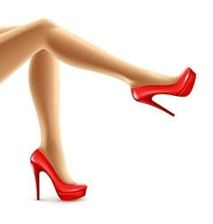 Female legs in red shoes vector