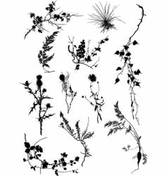 floral silhouettes vector image