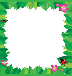 Ladybug on leaves with green leaves frame vector