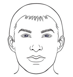 men face chart vector image vector image