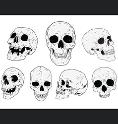 SKULLS - Hand Drawn vector image