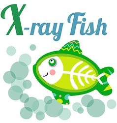 XrayFish vector image vector image