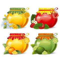 Marmalade and honey in cute jars homemade isolated vector