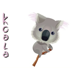Animal koala vector