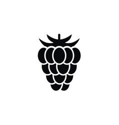 isolated shrubby plant icon berry elemen vector image