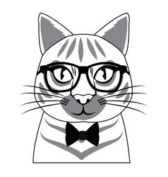 Portrait of cat with glasses fashion vector