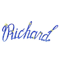 Richard name lettering tinsels vector