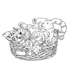 Sketch of playful cats Sleeping vector image