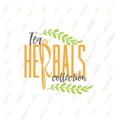 Herbal tea collection badge design sticker vector