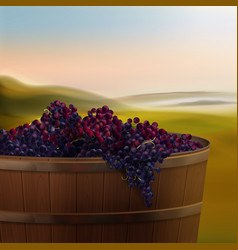 Vat with grapes vector