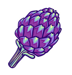 Artichoke violet flower head isolated on white vector