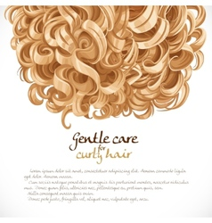 Blond curled hair background vector image vector image