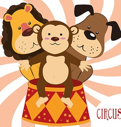 circus entertainment vector image
