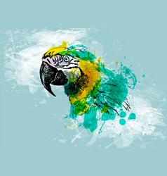 Colored hand sketch head ara vector