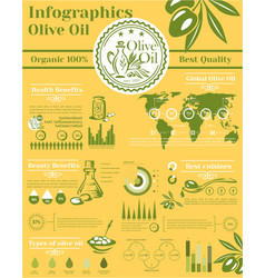 olive oil infographic elements template vector image
