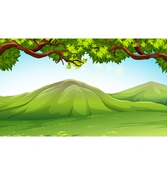Scene with moutains and trees vector image vector image