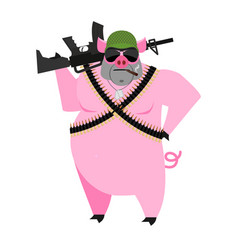 Pig soldiers swine war wild boar with gun aper vector