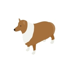 Collie dog icon isometric 3d style vector
