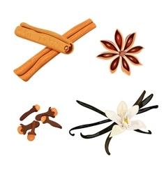 Set of spices vanilla cloves anise cinnamon vector image