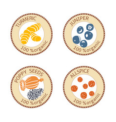 Set of spices labels 100 organic collection vector