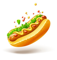 Hot dog with sausage lettuce vector
