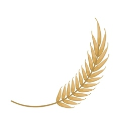 Wheat spike icon design vector image vector image