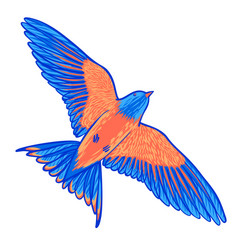 Blue tropical bird on a white background bird of vector