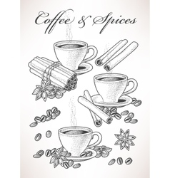 Coffee and spice vector