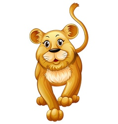 Cute lion cub with happy face vector image vector image