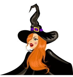 Halloween witch in the hat vector
