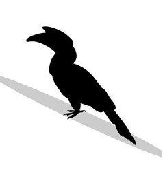 hornbill bird black silhouette animal vector image