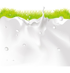 Milk splash background and green grass vector