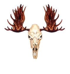 Moose skull vector