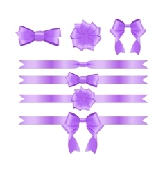 Violet ribbon and bow set for birthday and vector