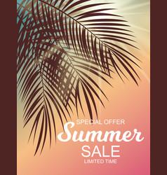 summer sale background vector image