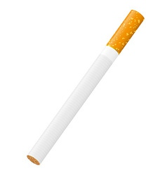 cigarette 01 vector image