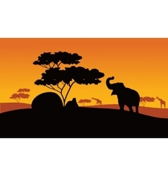 Silhhouette of elephant in park vector image vector image