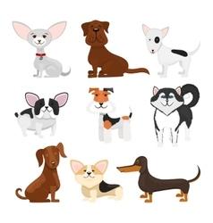 Dog breeds cartoon set vector image vector image