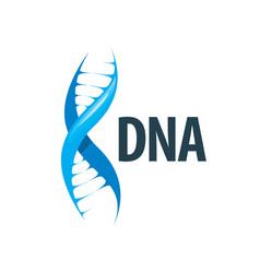 logo dna vector image vector image