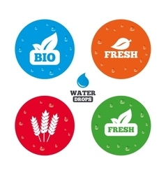 Natural fresh bio food icons vector