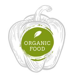 Label paprika pepper fresh natural eco food hand vector