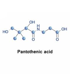 Pantothenic acid vitamin b5 vector