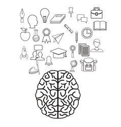 White background with sketch contour brain human vector