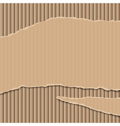Cardboard corrugated banner vector image